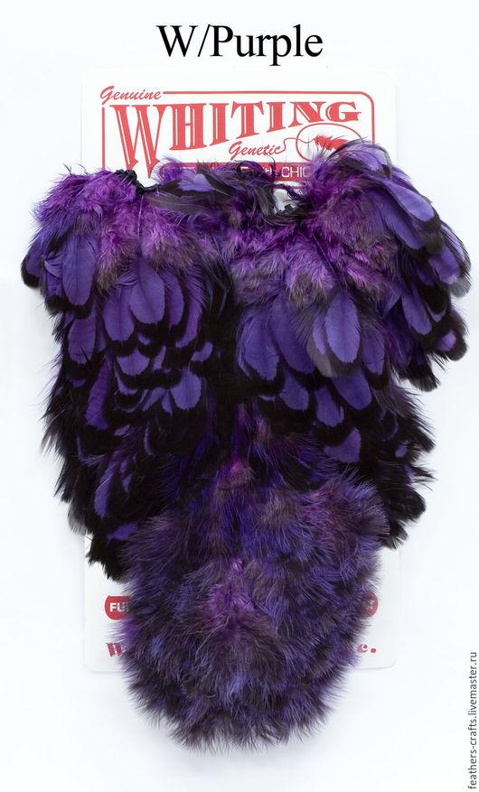 Другие виды рукоделия ручной работы. Ярмарка Мастеров - ручная работа. Купить Перья American Hen SH/C BLW/Purple (42803354). Handmade.