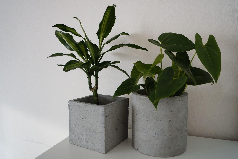Купить архитектурный бетон для кашпо верещагинский бетон цена