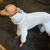 Зоотовары handmade. Livemaster - original item Catsuit for a Peruvian naked dog. Handmade.