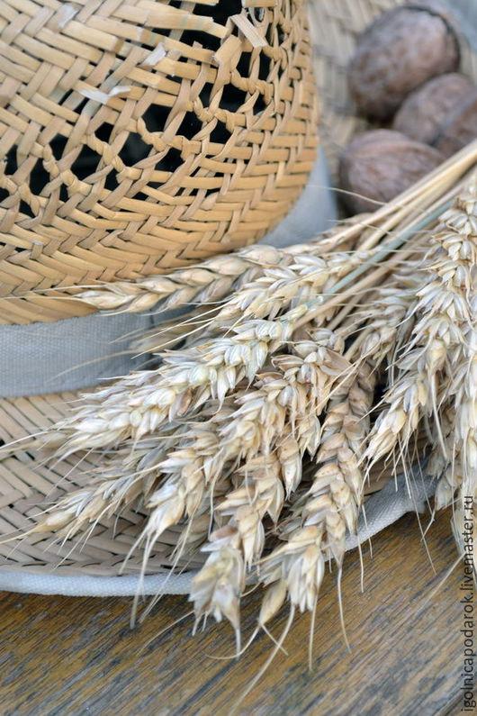 Букеты ручной работы. Ярмарка Мастеров - ручная работа. Купить Колосья пшеницы натуральные, сбор 2016. Handmade. Желтый