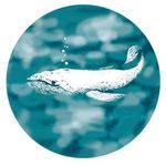 Whale_grove - Ярмарка Мастеров - ручная работа, handmade