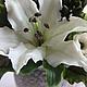 Свадебные цветы ручной работы. Белых лилий аромат. Елена Касимова. Ярмарка Мастеров. Цветы ручной работы, холодный фарфор