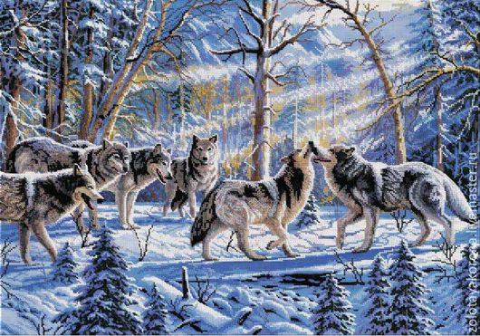 Зимние волки.