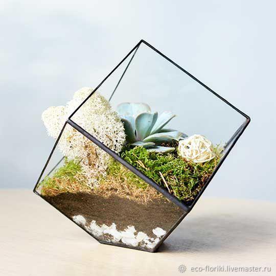 Флорариум `Лед` от Floriki