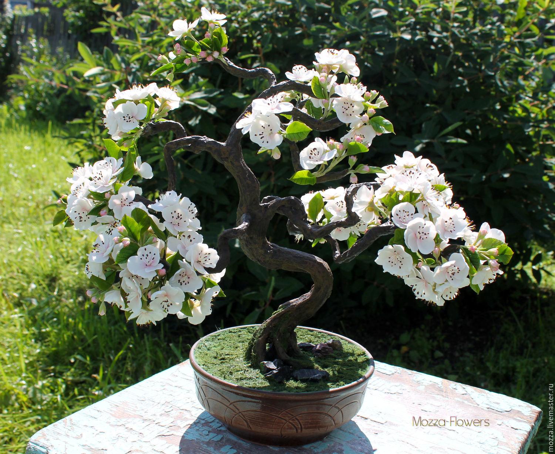 'Blooming bonsai' . handmade from polymer clay, Bonsai, Zarechny,  Фото №1