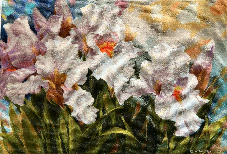 Коллекция садовых цветов - ирисы, Картины, Кронштадт,  Фото №1