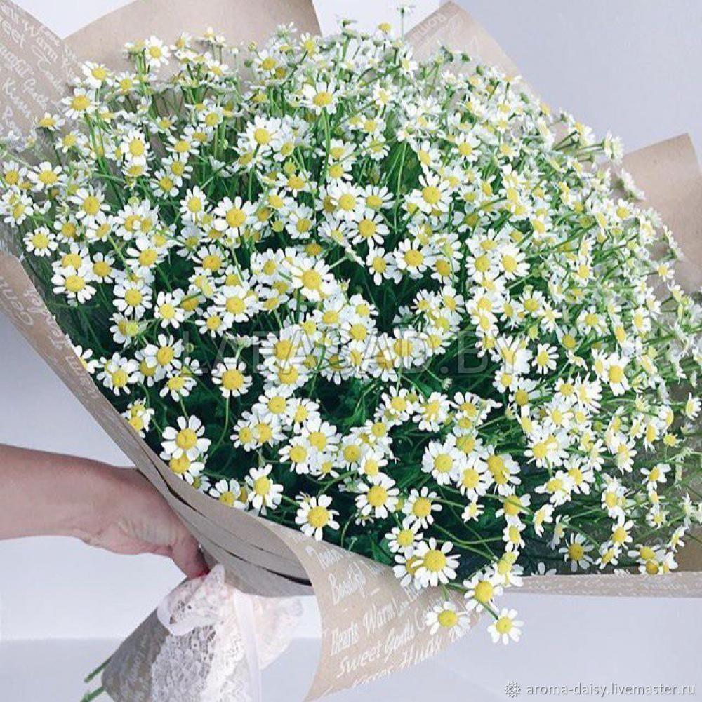 Ромашки букет продажа, цветок