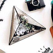 Цветы и флористика ручной работы. Ярмарка Мастеров - ручная работа Флорариум Пирамида трехгранная. Handmade.