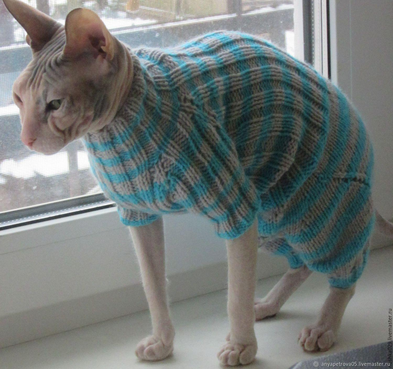 комбинезон для кошкикота купить в интернет магазине на ярмарке