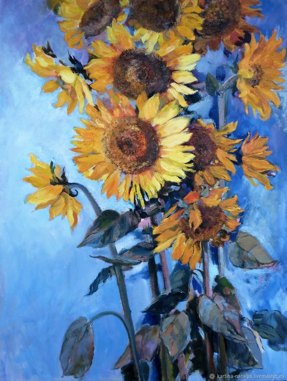Sunflowers, Pictures, Dimitrovgrad,  Фото №1