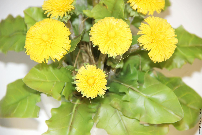 Букет одуванчиков заказать садовые многолетние цветы купить г.москва