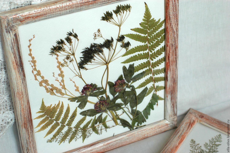 Идея для гербария фото