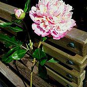 Цветы ручной работы. Ярмарка Мастеров - ручная работа Пион из полимерной глины (холодный фарфор ). Handmade.