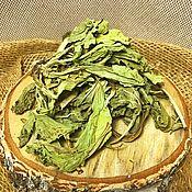 Материалы для творчества handmade. Livemaster - original item Plantain leaf. Handmade.