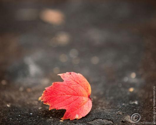 Фотокартины ручной работы. Ярмарка Мастеров - ручная работа. Купить Одинокий лист осенний, гонимый ветром в никуда.. Handmade. Рыжий