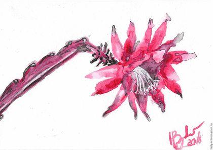 `Цветок кактуса. Эпифиллум`, рисунок, тушь