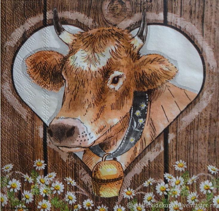 Для кухни, открытки с коровами