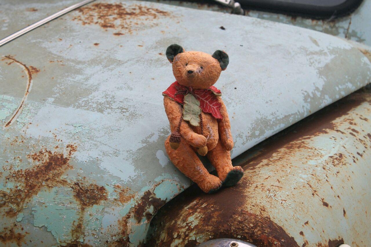 Тедди мишка Матвейка, Мишки Тедди, Грязи,  Фото №1