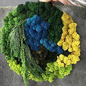 Картины и панно handmade. Livemaster - original item Round Fotokartin of stabilized moss and plants. Handmade.