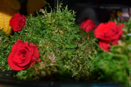 Цветы ручной работы. Ярмарка Мастеров - ручная работа. Купить Доброе мохнатое сердечко ;). Handmade. Стабилизированные цветы, розы