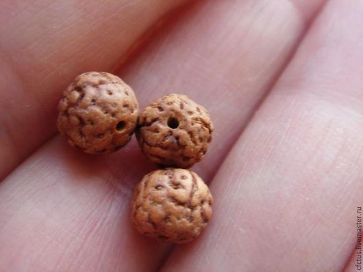 Для украшений ручной работы. Ярмарка Мастеров - ручная работа. Купить 10 шт Бусины Рудракши 6 мм ( семена дерева). Handmade.