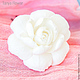 Свадебные украшения ручной работы. Заказать Шпильки с белой гарденией. Tanya Flower. Ярмарка Мастеров. Украшение для волос, цветы в волосы