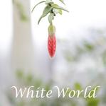 WhiteWorld - Ярмарка Мастеров - ручная работа, handmade