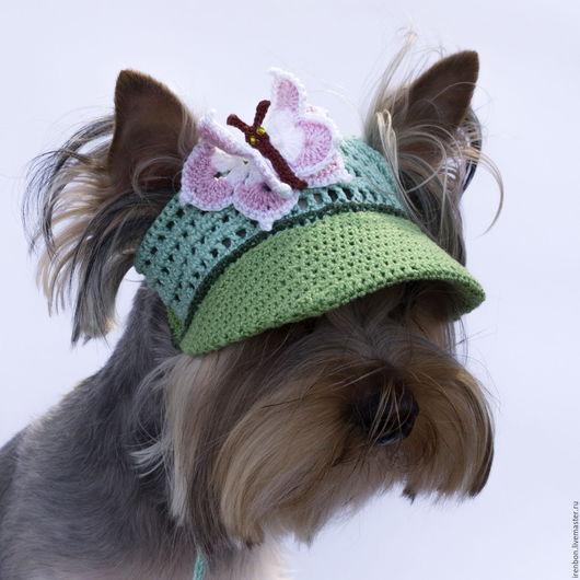 Одежда для собак, ручной работы. Ярмарка Мастеров - ручная работа. Купить Кепка для собаки Бабочка, Бейсболка для собаки, Козырек для собаки. Handmade.