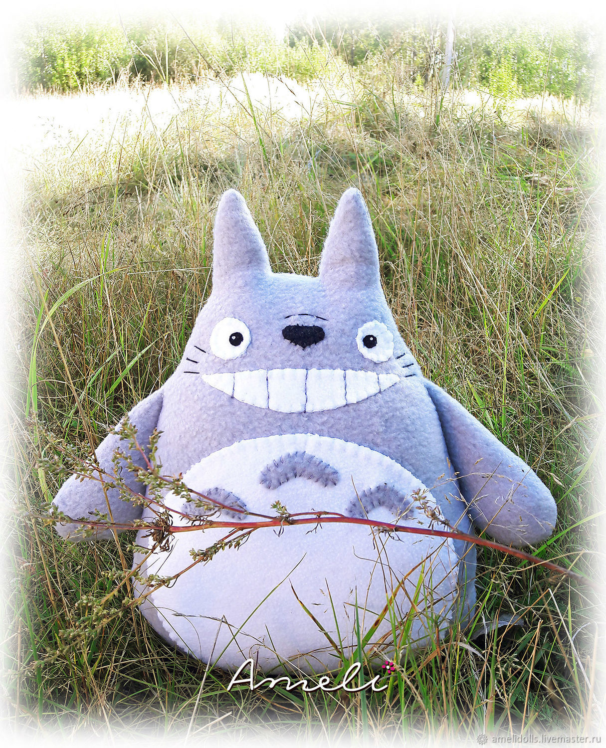 Totoro a surprise, Stuffed Toys, Tver,  Фото №1