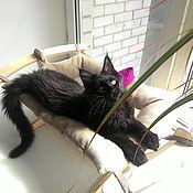 """Для домашних животных, ручной работы. Ярмарка Мастеров - ручная работа Комплект """"Гамак для кошек """"Бежевый"""" с 2-мя полотнами"""". Handmade."""