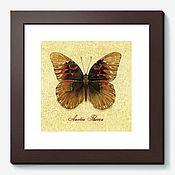 """Картины и панно ручной работы. Ярмарка Мастеров - ручная работа Акварель """"Винтажная бабочка"""". Handmade."""