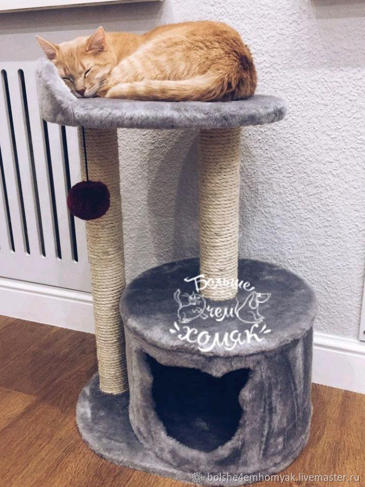 дом для кота