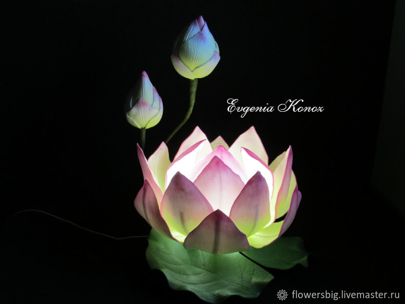 Night light 'Lotus' Water Lily Nymphea Water lily Lighting, Nightlights, Slavgorod,  Фото №1