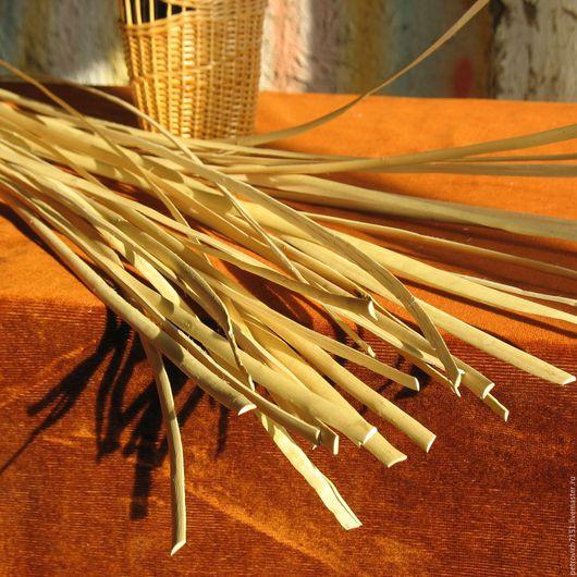Другие виды рукоделия ручной работы. Ярмарка Мастеров - ручная работа. Купить Лента ивовая широкая 8 мм. от 150 см.. Handmade.