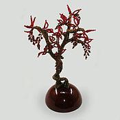 Цветы и флористика handmade. Livemaster - original item Bonsai pomegranate. Handmade.