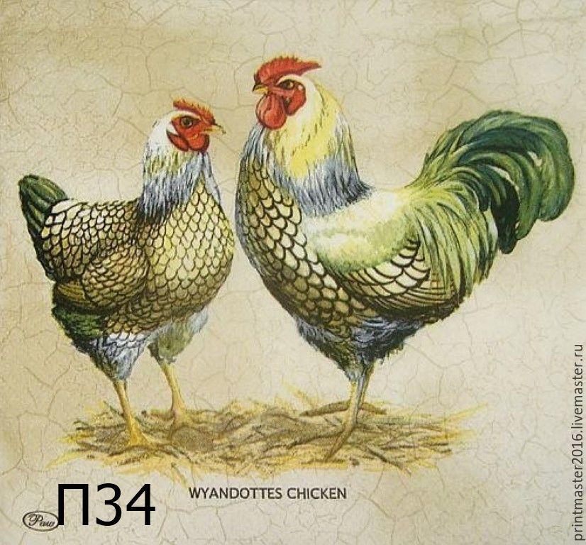 каталоге рисовая бумага и курица считают, что