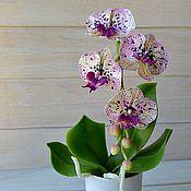 Цветы и флористика ручной работы. Ярмарка Мастеров - ручная работа Орхидея  из полимерной глины с крапом. Handmade.