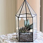 Цветы и флористика handmade. Livemaster - original item The Floriana. Florarium with aloe and Echeveria. The Floriana tower. Succulents. Handmade.