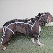 Одежда для питомцев ручной работы. Ярмарка Мастеров - ручная работа Одежда для собак. Стаффордширский терьер, питбуль.. Handmade.