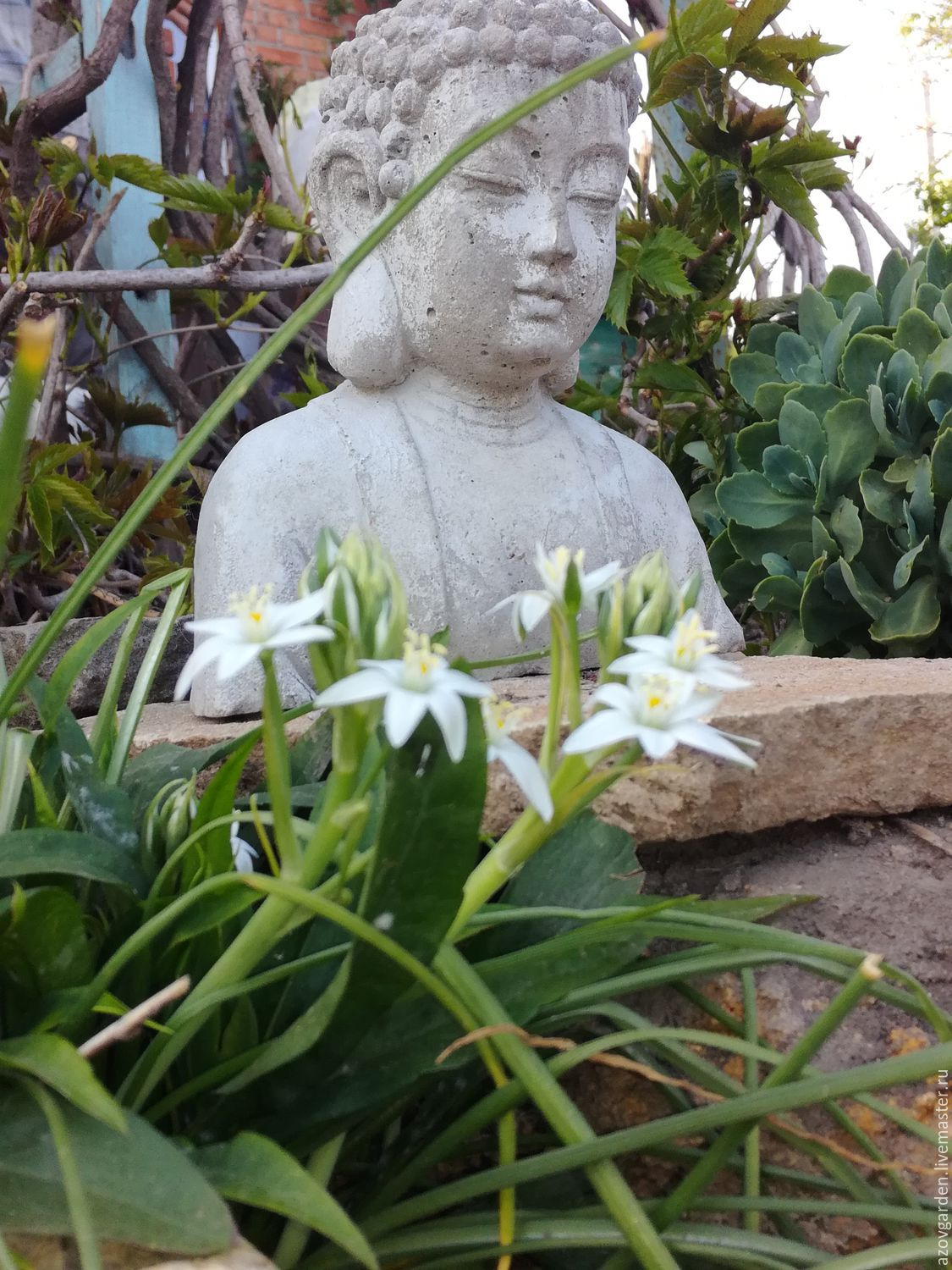 Concrete bust of Buddha for home decor and garden – shop online on ...