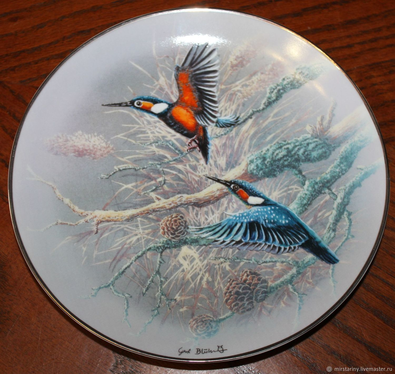 Rare Birds of the world plate series, Gerhard Bluhm, Rosenthal, Vintage interior, Moscow,  Фото №1