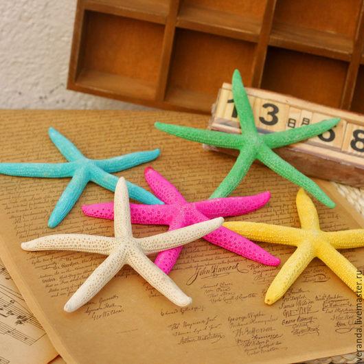 Ракушки - звезды морские, натуральные, разных размеров и цветов, для творчества и декорирования