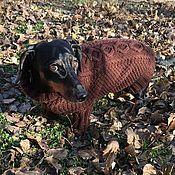 Для домашних животных, handmade. Livemaster - original item Knitted clothes for the animals (dogs or cats). Handmade.
