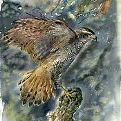 Картины и панно handmade. Livemaster - original item Pictures: Hawk. Handmade.