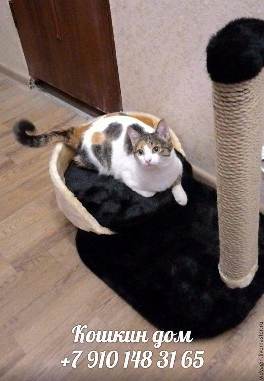 Аксессуары для кошек, ручной работы. Ярмарка Мастеров - ручная работа. Купить Когтеточка. Handmade. Когтеточка, кот, домик для кошки