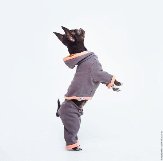 Одежда для собак, ручной работы. Ярмарка Мастеров - ручная работа. Купить Комплект ( худи, брюки, юбка). Handmade. Хаки