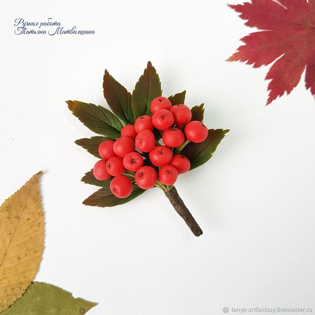 Brooch Rowan. Brooch autumn. Brooch Berries, Brooches, Vladivostok,  Фото №1
