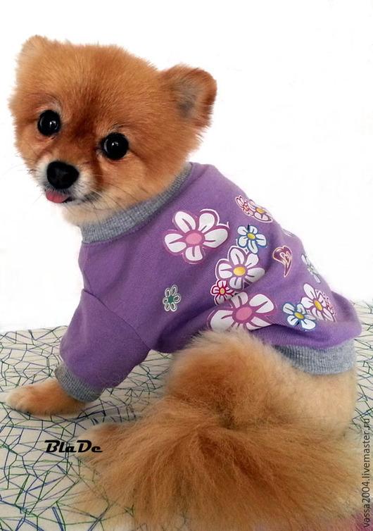 """Одежда для собак, ручной работы. Ярмарка Мастеров - ручная работа. Купить Кофточка """"Цветочная полянка """". Handmade. Разноцветный"""