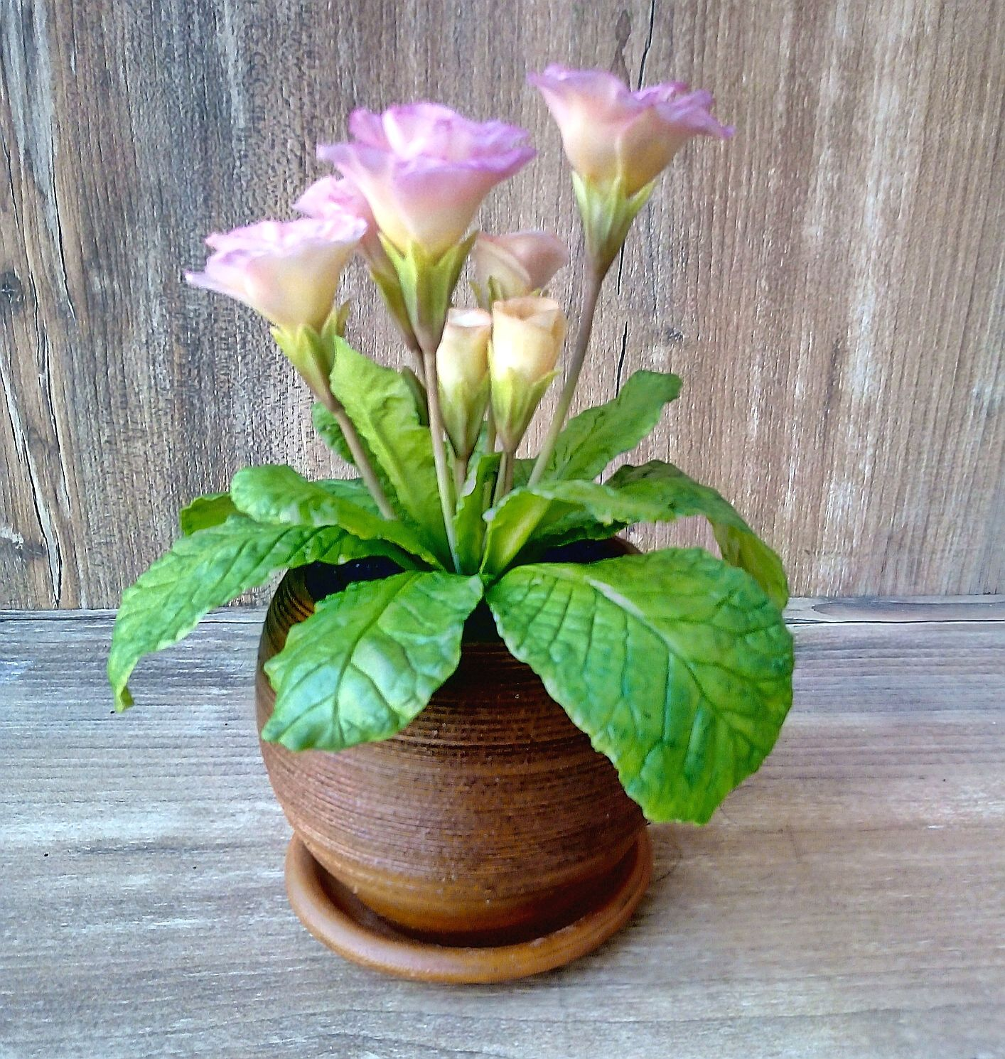 Primula-primrose from polymer clay, Composition, Orel,  Фото №1