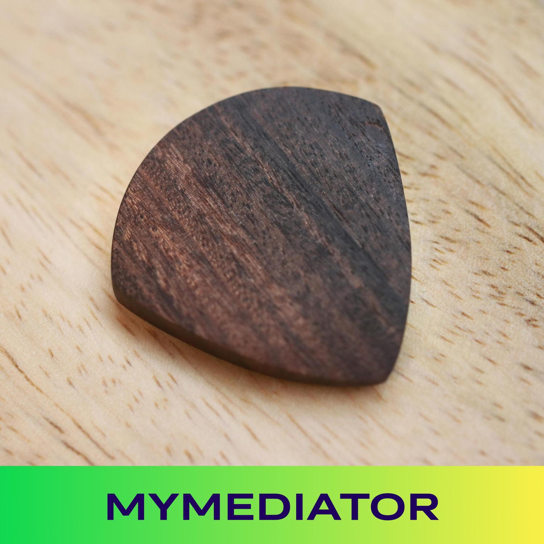 American Walnut wood pick: Jazzwood, Guitar picks, Zhukovsky,  Фото №1